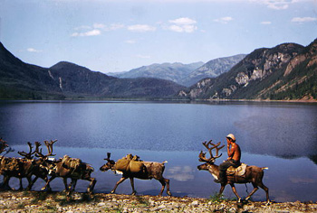Индигирка - река Якутии